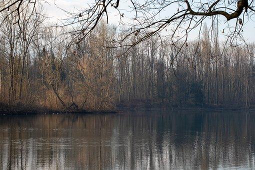 Lake, Savoie, Tree, Rhône-alpes, Water, Winter, Morning