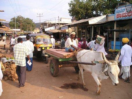 India, Oxcart, Oxen, Dealer