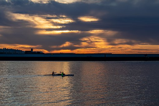 Hamburg, Ducks, Elbe, Sunset, Water Bird, Animal World