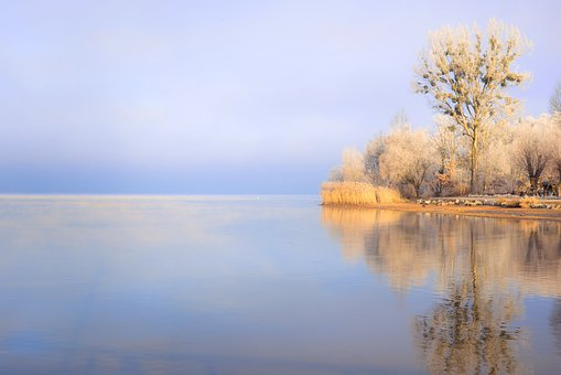 Cold, Winter, Lake, Ripe, Wintry, Frost, Nature