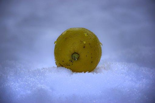 Lemon, Snow, Vitamins, Health, Fresh