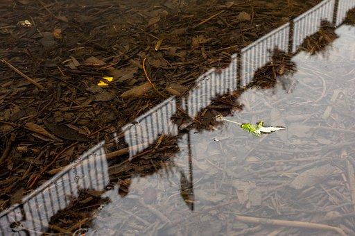 Plastic In The River, River, Plastic