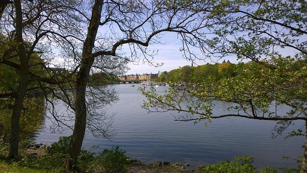 Stockholm City, Lake, Swedish, Scandinavia, Water, City