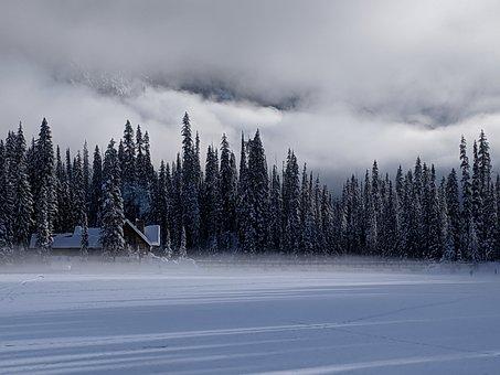 Emerald Lake Lodge, Snow, Fog, Nature, Winter