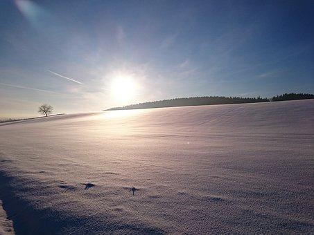 Sun, Winter, Cold, Landscape, Nature, Wintry, Blue