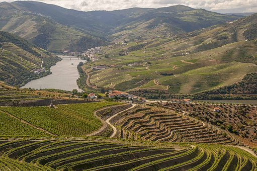 Douro, Portugal, Tourist, Travel