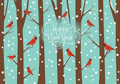 Happy New Year, Greeting, New Year's Day, Winter, Snow