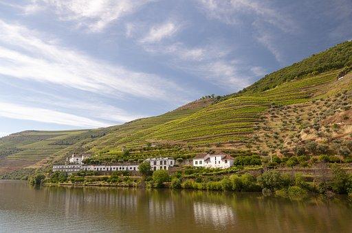 Douro, Rio, Fifth, Wine, Landscape