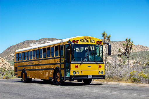 School Bus, Yellow, America, Bus