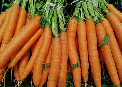 Carrots, Herb, Vegetables, Healthy