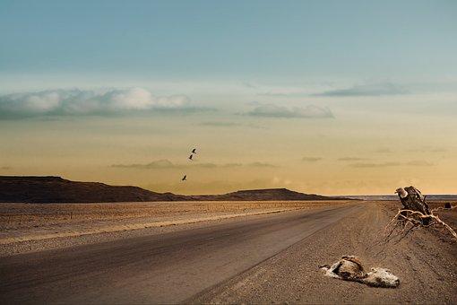 Landscape, Road, Tapeworm, Sky, Clouds
