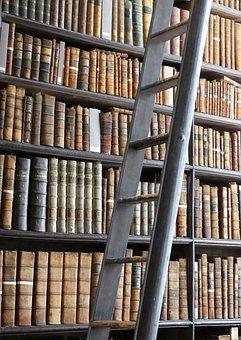 Books, Library, Book, Knowledge, Learn, Literature