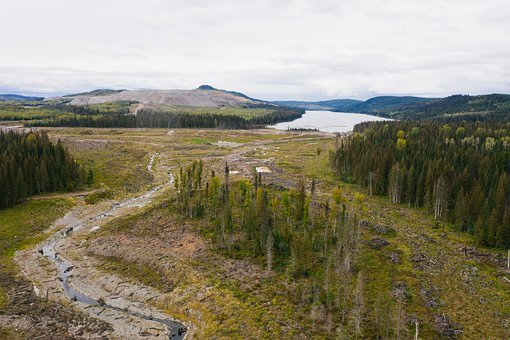 Mount Polley, Hazeltine Creek