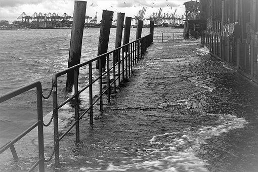 High Water, Fish Market, Flood, Port Motifs