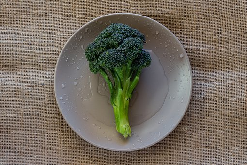Broccoli, Vegetable, Plate, Still Life