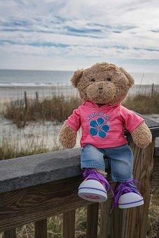 Teddy Bear, Teddy, Bear, Myrtle Beach, Ocean, Water
