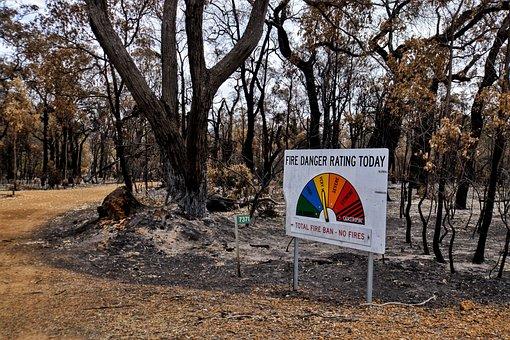 Bushfire, Sign, Burnt, Australia, Trees, Warning