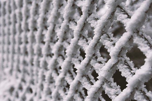Background, Winter, Snow, Cold, Fence, Rime, White
