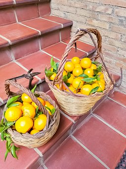 Citrus Fruit, Fruit, Food, Shopping Basket, Produce