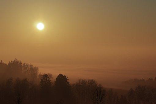 Sunset, Fog, Mood, Forest, Mystical