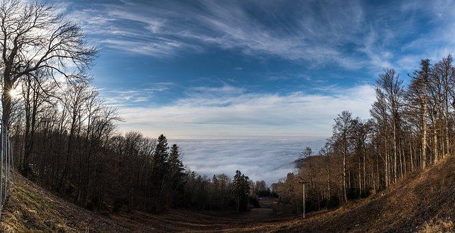 Fog, View, Mountain, Nature, Landscape, Sun, Scenic