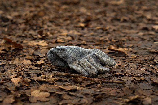 Glove, Forest Floor, Leaves, Nature, Lost, Forget