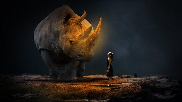 Hope Of Good Time, Dark, Night, Hope, Love, Hippo