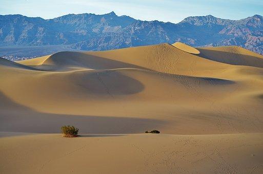 Mesquite Flats, Sand Dunes, Death Valley Np
