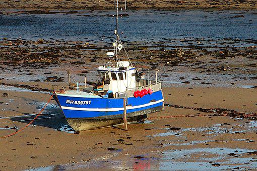 Fishing, Transport, Nature, Port, River, Brittany