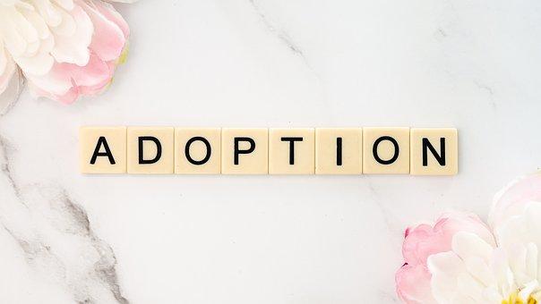 Adoption, Rescue, Shelter, Save