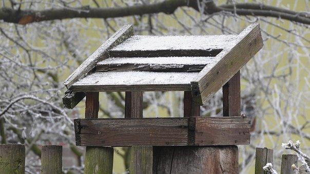 Birdhouse, A Bird Feeder For The Birds