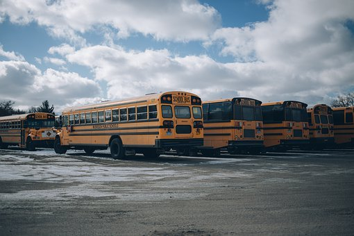 Bus, School, Back To School, Vehicle, Education