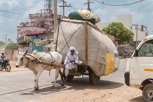 India, Merchant, Dealer, Ox, Goods, Asia, Street, Poor