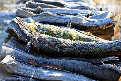 Wood, Weathered, Holzstapel, Hoarfrost