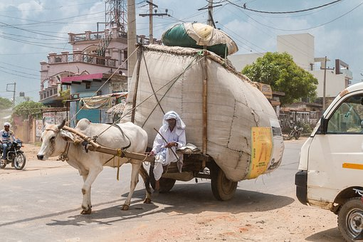 India, Merchant, Dealer, Ox, Goods, Asia