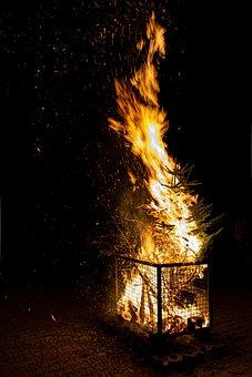 Fire, Flame, Fir Tree, Knut, Burn