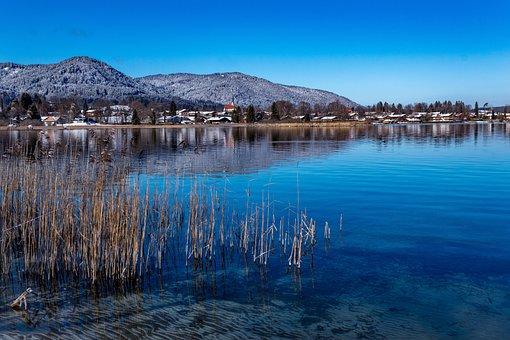Lake, Alpine, Tegernsee, Winter, Reed, Panorama, Water