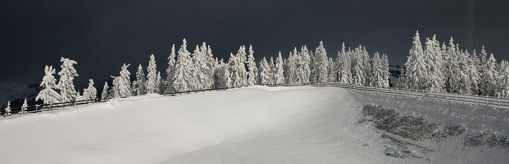 Winter, Snow, Nature, Mountains, Forest