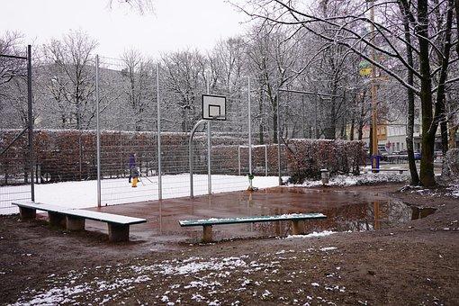 Cold, Winter, Snow, Park, Basket, Yard, Tree, Cage, Net