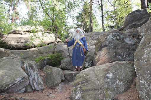 Forest, Rock, Stones, Nature, Hermit, Dippold