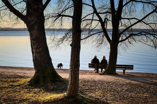 Pair, Together, Rest, Seniors, Dog, Walk, Enjoy, Lake