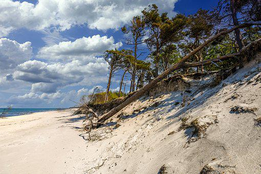 Beach, Sand Beach, Coast, Sea, Baltic Sea, Darß