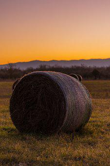 Hay Bale, Field, Country, Agriculture