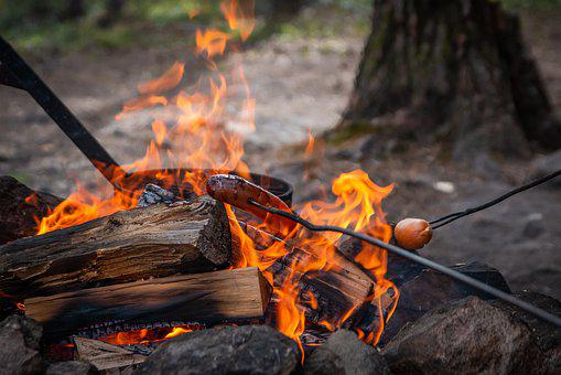 Campfire, Finland, Lapland, Nature, Outdoors, Woods