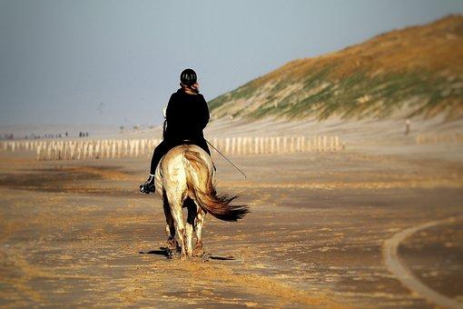 Horse, Horsewoman, Beach, North Sea, Holland, Dunes
