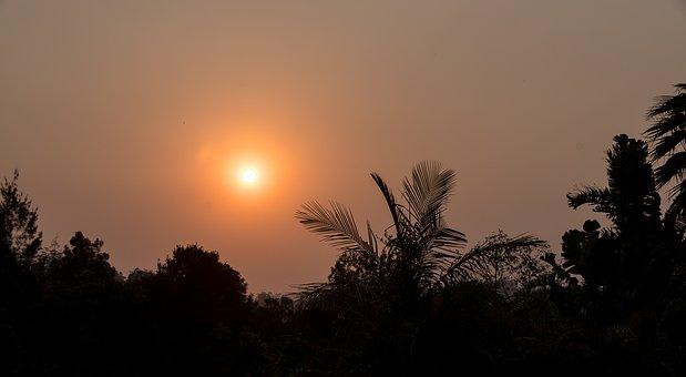 Sunset, Smoke, Horizon, Trees, Bushfire, Fire, Sky