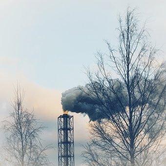Sky, Smoking, Winter, Sad, Trees