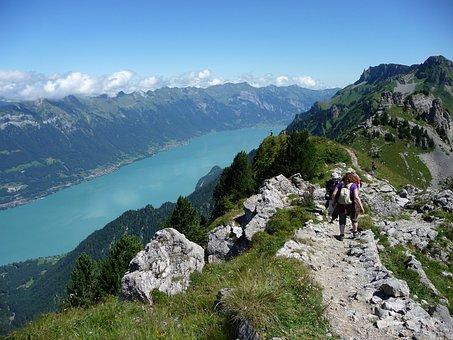 Switzerland, Mountains, Migratory Path, Trail, Path