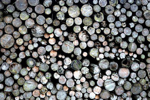 Chopped, Firewood, Axe, Wood, Timber, Logs, Cut, Tree