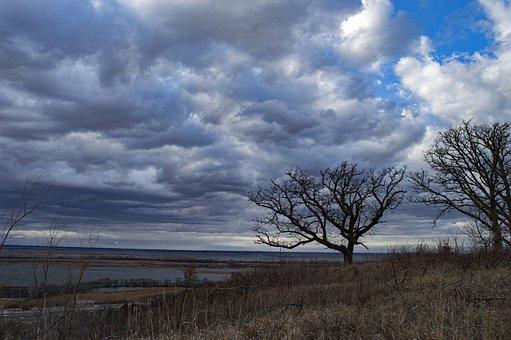 Star School Hill Prairie, Conservation Area, Missouri